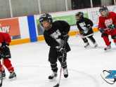 ZHL Tyke Division (Birth Years 2013 & 2014)